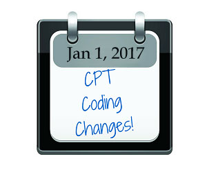 The Importance Of Physical Therapy Cpt Codes